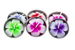 Λουλούδια Frangipani candle spa Στοκ φωτογραφίες με δικαίωμα ελεύθερης χρήσης