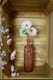 Λουλούδια gerbera άνοιξη σε ένα εκλεκτής ποιότητας ρόδινο βάζο Στοκ Εικόνα