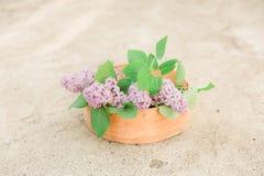 Λουλούδια Lillac στον παλαιό διαχωριστή Στοκ φωτογραφία με δικαίωμα ελεύθερης χρήσης