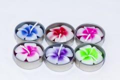 Λουλούδια Plumeria candle spa στην Ταϊλάνδη Στοκ φωτογραφία με δικαίωμα ελεύθερης χρήσης