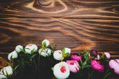 Λουλούδια Rununculus σε ένα ξύλινο καφετί υπόβαθρο Στοκ φωτογραφία με δικαίωμα ελεύθερης χρήσης