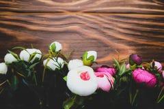 Λουλούδια Rununculus σε ένα ξύλινο καφετί υπόβαθρο Στοκ εικόνα με δικαίωμα ελεύθερης χρήσης