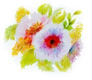 Λουλούδια Watercolor σε ένα άσπρο υπόβαθρο ελεύθερη απεικόνιση δικαιώματος