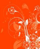 λουλούδι ανασκόπησης Στοκ εικόνες με δικαίωμα ελεύθερης χρήσης