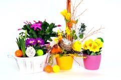 λουλούδι αυγών Πάσχας ρ&upsi στοκ εικόνα