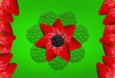 Λουλούδι βατόμουρων φραουλών σε ένα πράσινο υπόβαθρο για την εκτύπωση σε έναν πίνακα γυαλιού διάνυσμα clipart στοκ εικόνα με δικαίωμα ελεύθερης χρήσης