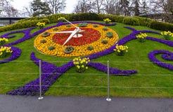 λουλούδι Γενεύη ρολογιών Στοκ Εικόνα