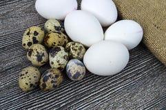 Λουλούδι-διαμορφωμένα αυγά κοτόπουλου και αυγά ορτυκιών Άσπρη στάση αυγών κοτόπουλου και αυγών ορτυκιών δίπλα-δίπλα σε ένα ξύλινο Στοκ Φωτογραφίες
