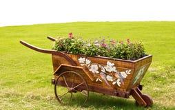 λουλούδι κάρρων Στοκ εικόνα με δικαίωμα ελεύθερης χρήσης