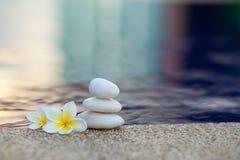 Λουλούδι και πέτρες Plumeria Στοκ φωτογραφίες με δικαίωμα ελεύθερης χρήσης