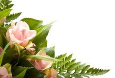 λουλούδι καρτών στοκ φωτογραφίες