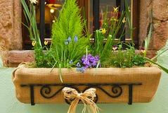 λουλούδι κιβωτίων Στοκ εικόνες με δικαίωμα ελεύθερης χρήσης