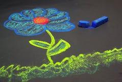 λουλούδι κιμωλίας Στοκ Εικόνες