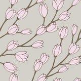 λουλούδι κλάδων Στοκ Εικόνες