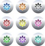 λουλούδι κουμπιών Στοκ Εικόνες