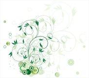 λουλούδι κύκλων Στοκ εικόνα με δικαίωμα ελεύθερης χρήσης