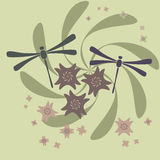 λουλούδι λιβελλουλών Στοκ Εικόνα