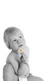 λουλούδι παιδιών Στοκ Εικόνα