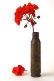 λουλούδι περίπτωσης στοκ εικόνα