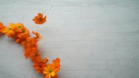 Λουλούδι που διαμορφώνει μια μορφή καρδιών απόθεμα βίντεο