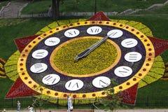 λουλούδι ρολογιών kyiv Στοκ φωτογραφία με δικαίωμα ελεύθερης χρήσης