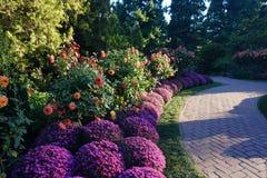 Λουλούδι-2 στον κήπο Longwood στοκ φωτογραφία με δικαίωμα ελεύθερης χρήσης