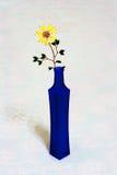 Λουλούδι στο μπλε μπουκάλι στοκ φωτογραφία με δικαίωμα ελεύθερης χρήσης