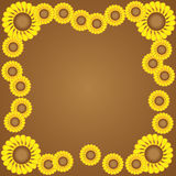 λουλούδι συνόρων κίτρινο Στοκ Φωτογραφίες