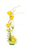 λουλούδι σύνθεσης στοκ φωτογραφία
