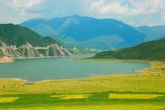 Λουλούδι της Κίνας Qinghai και τοπίο πεδίων Στοκ Φωτογραφία