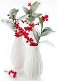 λουλούδι Χριστουγέννω&nu Στοκ εικόνες με δικαίωμα ελεύθερης χρήσης