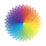 λουλούδι χρώματος πολ&upsil Στοκ Εικόνα