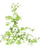 λουλούδι χρώματος πράσιν Στοκ Φωτογραφίες