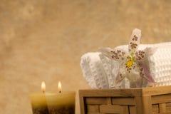 λουλούδι όπως τη σκηνή zen Στοκ εικόνα με δικαίωμα ελεύθερης χρήσης