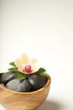 λουλούδι όπως τη σκηνή zen Στοκ φωτογραφία με δικαίωμα ελεύθερης χρήσης