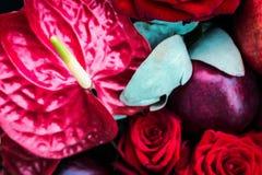 Λουλούδι Andreanum Anturium και κόκκινα τριαντάφυλλα Στοκ φωτογραφία με δικαίωμα ελεύθερης χρήσης
