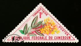 Λουλούδι lutea Plumeria, circa 1963 Στοκ φωτογραφίες με δικαίωμα ελεύθερης χρήσης