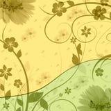 λουλούδια ανασκόπησης Στοκ Φωτογραφία