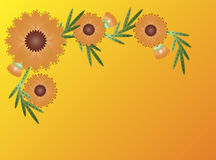 λουλούδι η πορτοκαλιά &del Στοκ εικόνα με δικαίωμα ελεύθερης χρήσης