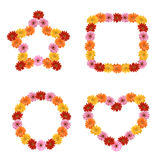 Λουλούδι της Daisy στη μορφή Στοκ Εικόνες