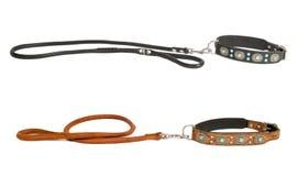 λουρί δύο σκυλιών περιλ&alp στοκ εικόνες με δικαίωμα ελεύθερης χρήσης