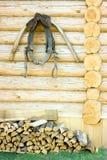 λουρί Στοκ εικόνα με δικαίωμα ελεύθερης χρήσης