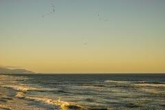 Λουτρά Sutro Ειρηνικών Ωκεανών Στοκ εικόνες με δικαίωμα ελεύθερης χρήσης
