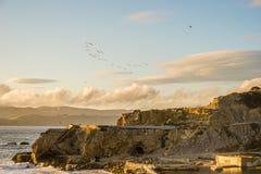 Λουτρά Sutro Ειρηνικών Ωκεανών Στοκ εικόνα με δικαίωμα ελεύθερης χρήσης