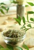 λουτρό πράσινο salts spa ανασκόπησης Στοκ Εικόνα