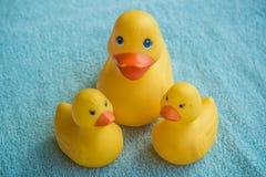 Λουτρό duckies Στοκ Εικόνα