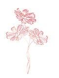 Λουλουδιών απόχρωση που αποτυπώνεται σε ανάγλυφο ρόδινη διανυσματική απεικόνιση