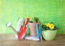 Λουλούδια άνοιξη και εργαλεία κηπουρικής Στοκ εικόνες με δικαίωμα ελεύθερης χρήσης