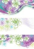 Λουλούδια άνοιξη και σύνορα γραμμών. Στοιχείο σχεδίου διανυσματική απεικόνιση
