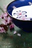 Λουλούδια άνοιξη στο μπλε κύπελλο Στοκ Φωτογραφίες